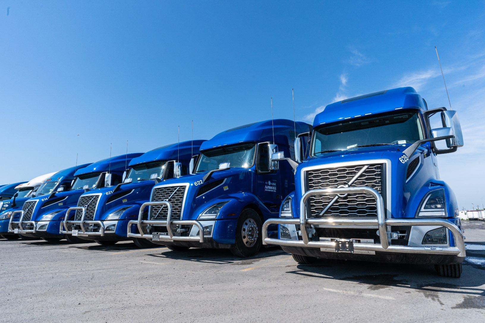 Photographe d'agence Web | Camions bleus alignés