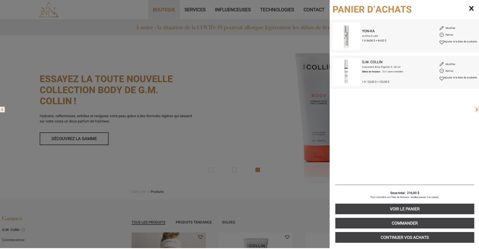 Stratégie de notoriété numérique | Influenceuse Salon XN